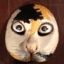 「セロ弾きのゴーシュ」猫の面